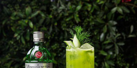 Drink, Alcoholic beverage, Green, Non-alcoholic beverage, Distilled beverage, Liqueur, Cocktail, Bottle, Champagne cocktail, Cocktail garnish,