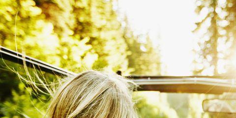 Hair, Blond, Hairstyle, Beauty, Long hair, Yellow, Shoulder, Sunlight, Surfer hair, Tree,