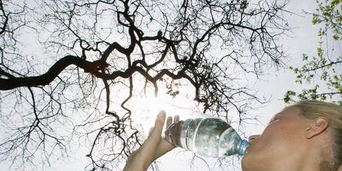 Branch, Fluid, Shoulder, Liquid, Twig, Plastic bottle, Bottle, Drink, People in nature, Drinkware,