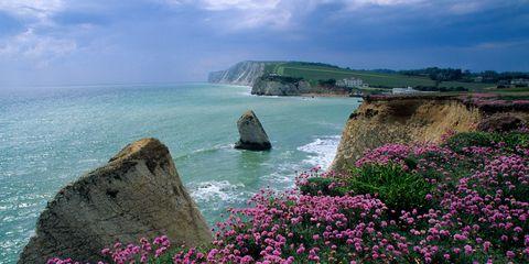 Coastal and oceanic landforms, Natural landscape, Coast, Flower, Rock, Ocean, Promontory, Headland, Petal, Sea,