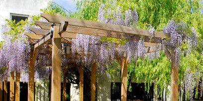 Furniture, Table, Outdoor table, Outdoor furniture, Pergola, Shade, Patio, Gazebo, Outdoor structure, Restaurant,