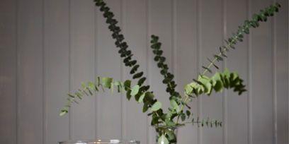 Serveware, Dishware, Tablecloth, Interior design, Candle, Home accessories, Terrestrial plant, Linens, Saucer, Flower Arranging,