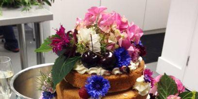Serveware, Food, Cuisine, Sweetness, Cake, Dishware, Flower, Dessert, Ingredient, Baked goods,