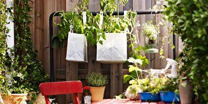Flowerpot, Plant, Outdoor table, Garden, Outdoor furniture, Interior design, Houseplant, Backyard, Herb, Yard,