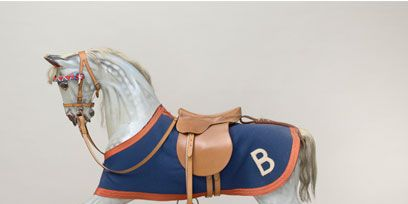 Brown, Product, Bridle, Horse supplies, Halter, Horse, Working animal, Rein, Horse harness, Horse tack,