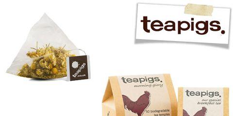 Ingredient, Wing, Bird, Chocolate, Beak, Label, Spice, Fowl,