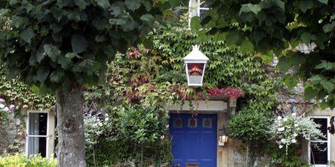 Door, Groundcover, Shrub, Light fixture, Gate, Home door, Concrete, Driveway,