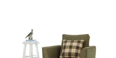 Furniture, Bird, Grey, Beige, Armrest, Feather, Beak, Outdoor furniture, Club chair, Pillow,