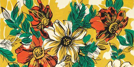 Yellow, Petal, Flower, Orange, Art, Illustration, Flowering plant, Painting, Daisy family, Paint,