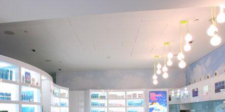 Interior design, Floor, Shelf, Room, Ceiling, Furniture, Flooring, Wall, Shelving, Interior design,