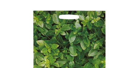 Leaf, Purple, Lavender, Violet, Groundcover, Herb, Annual plant, Paper,