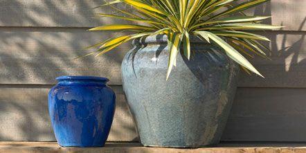 Blue, Flowerpot, Majorelle blue, Aqua, Electric blue, Cobalt blue, Azure, Teal, Turquoise, Houseplant,