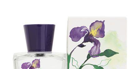 Fluid, Liquid, Flower, Purple, Petal, Lavender, Violet, Flowering plant, Botany, Font,