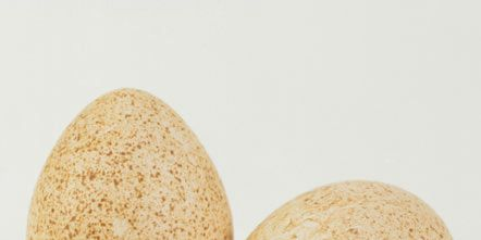 Ingredient, Khaki, Produce, Beige, Oval, Natural material, Egg,