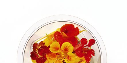 Petal, Flower, Red, Amber, Orange, Flowering plant, Cut flowers, Still life photography, Artificial flower, Annual plant,