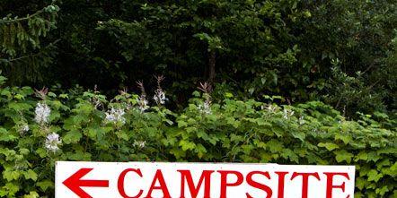 Vegetation, Plant, Plant community, Nature reserve, Groundcover, Signage, Shrub, Sign, Street sign, Plantation,