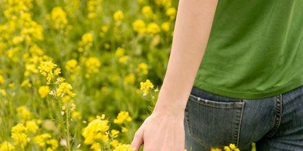 Yellow, Plant, Denim, Flower, Jeans, People in nature, Flowering plant, Wildflower, Pocket, Meadow,