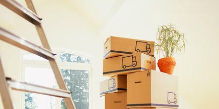 Wood, Floor, Flooring, Cardboard, Carton, Hardwood, Box, Plywood, Daylighting, Shipping box,