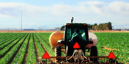 Agriculture, Farm, Agricultural machinery, Field, Plantation, Farmworker, Harvester, Rural area, Soil, Machine,