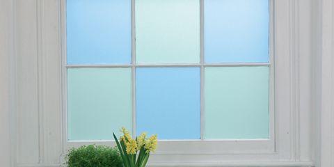 Green, Teal, Wall, Interior design, Flowerpot, Fixture, Turquoise, Interior design, Vase, Aqua,