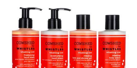 Liquid, Product, Red, Orange, Bottle, Peach, Tints and shades, Plastic bottle, Magenta, Cosmetics,