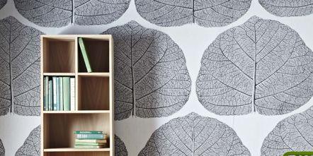 Wood, Green, Room, Shelf, Hardwood, Furniture, Floor, Interior design, Wall, Flooring,