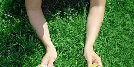 Grass, Green, Summer, Lawn,