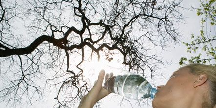 Branch, Shoulder, Fluid, Liquid, Twig, Plastic bottle, Bottle, People in nature, Drink, Drinkware,