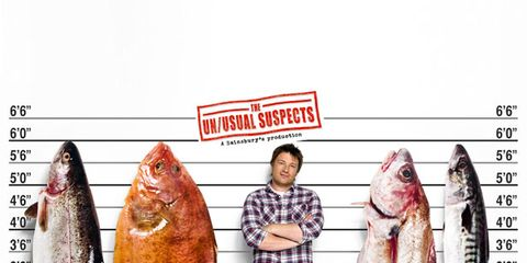 Vertebrate, Fish, Fishing, Fisherman, Fish, Seafood, Ray-finned fish, Recreational fishing, Fin, Tail,