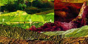 Landscape, Rock, Art, Painting, Illustration, Drawing, Plantation,