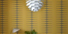 Wood, Floor, Flooring, Interior design, Furniture, Hardwood, Interior design, Plywood, Houseplant, Light fixture,