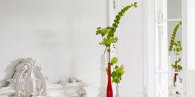Tablecloth, Textile, Flower, Linens, Petal, Flower Arranging, Floristry, Home accessories, Cut flowers, Floral design,