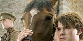 Human, People, Vertebrate, Horse, Mammal, Halter, Working animal, Horse supplies, Bridle, Jaw,