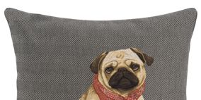 Textile, Dog, Carnivore, Dog supply, Dog breed, Working animal, Linens, Dog clothes, Home accessories, Fawn,