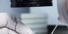 Liquid, Glass, Laboratory equipment, Transparent material, Laboratory, Research, Chemistry, Science, Medical, Safety glove,