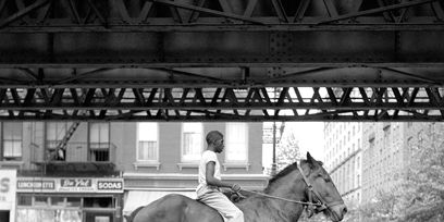 Horse supplies, Halter, Bridle, Horse, Horse tack, Rein, Style, Working animal, Monochrome, Monochrome photography,