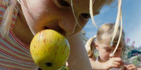 Human, Fun, Leisure, Summer, People in nature, Produce, Fruit, Natural foods, Play, Swing,