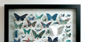 Insect, Arthropod, Pollinator, Textile, Butterfly, Wing, Teal, Invertebrate, Moths and butterflies, Aqua,