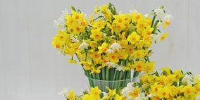 Yellow, Flower, Petal, Bouquet, Artifact, Cut flowers, Flowering plant, Flower Arranging, Vase, Floral design,