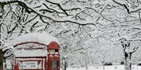 Winter, Branch, Freezing, Photograph, Standing, White, Public space, Snow, Telephone booth, Twig,