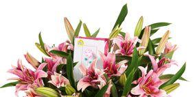 Petal, Flower, Bouquet, Pink, Cut flowers, Flowering plant, Botany, Floristry, Flower Arranging, Terrestrial plant,