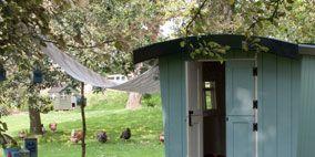 Wood, Property, Real estate, Garden, House, Home, Door, Backyard, Outdoor furniture, Yard,