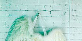 Turquoise, Aqua, Feather, Fur, Snapshot, Natural material, Tail, Wing,