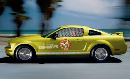 Ford Mustang Malaria Edition