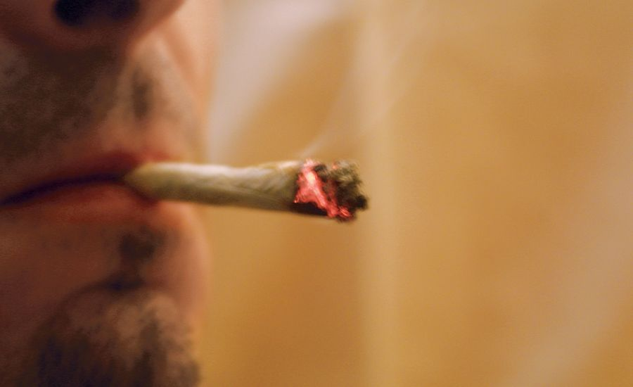 Up in Smoke: Police Drug-Detection Tactics