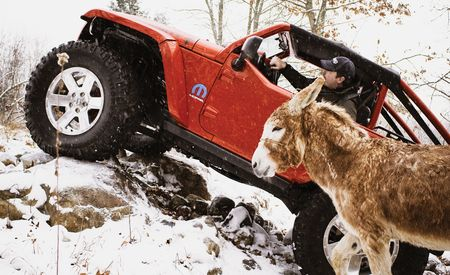 Jeep Lower Forty Concept vs. a Donkey