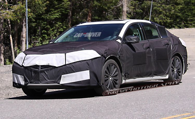 2015 Acura TLX Spy Photos