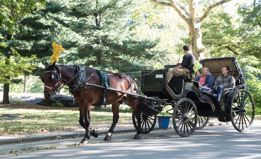 Can an Electric Car Really Replace Central Park's Horse-Drawn Carriages? - Slide 34