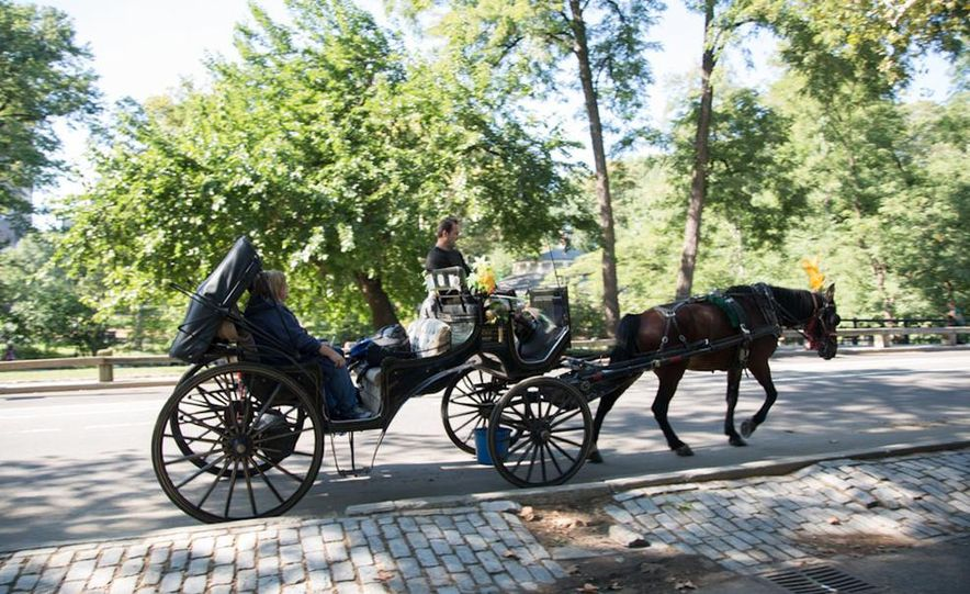 Can an Electric Car Really Replace Central Park's Horse-Drawn Carriages? - Slide 38