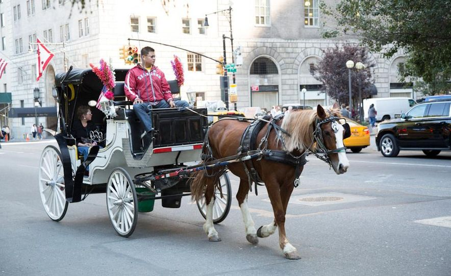 Can an Electric Car Really Replace Central Park's Horse-Drawn Carriages? - Slide 40